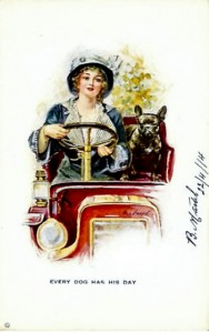 Woman driving in old car with french bulldog.