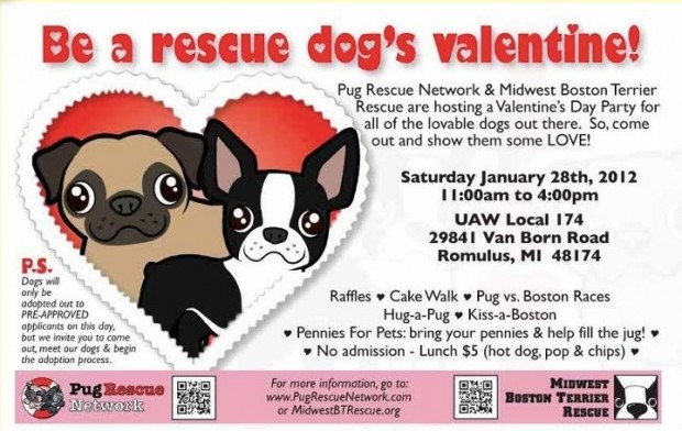 Be a Rescue Dogs Valentine