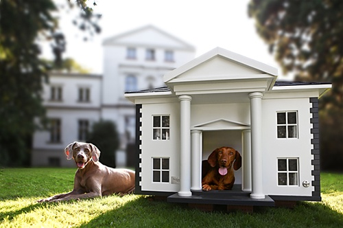 Alabama Dog House