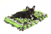 Wildebeest Meadow Pet Rug Green Mix with Bandit the Frenchie