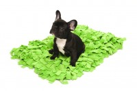 Wildebeest Meadow Pet Rug Green with Bandit the Frenchie