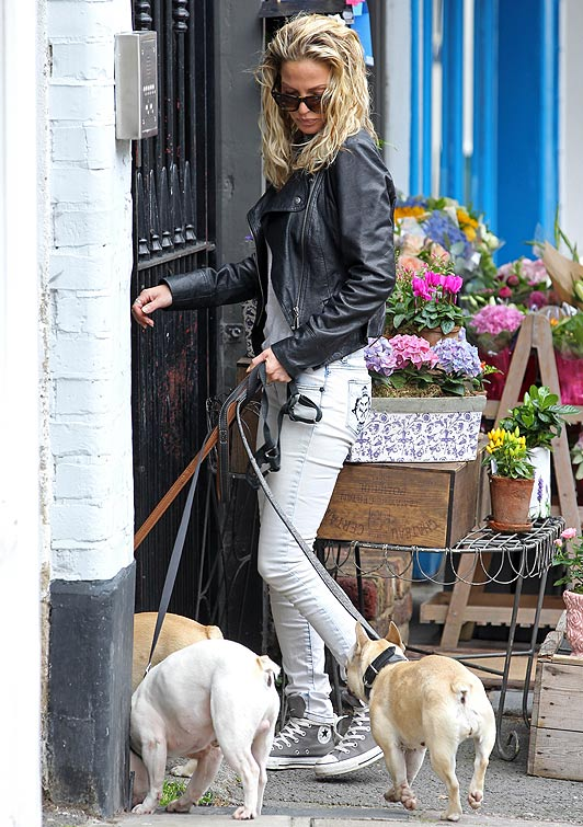 Sara Harding and Her Three French Bulldogs, Courtesy of Splash News