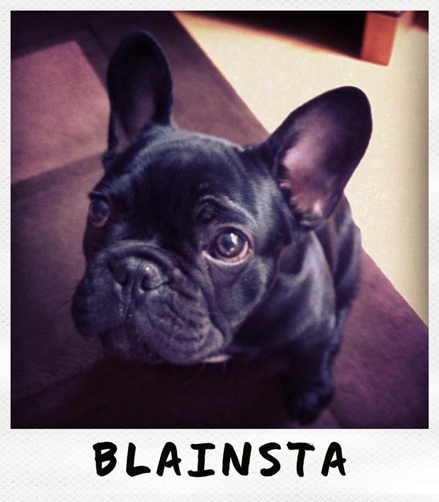 blainsta instagram