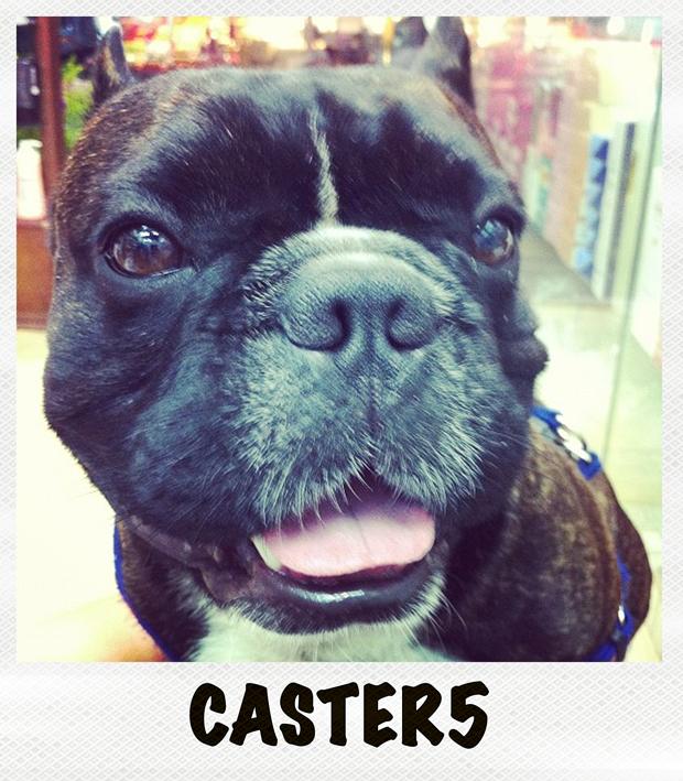 caster5