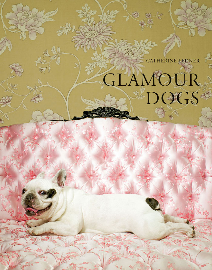 Glamour Dogs Cover French Bulldog