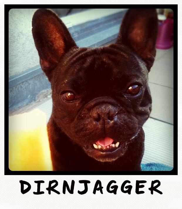 dirnjagger