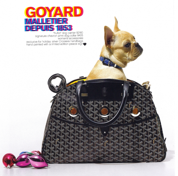 French Bulldog Inside a Goyard Bag