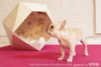 hmm_ep13_geometricdoghouse_option5
