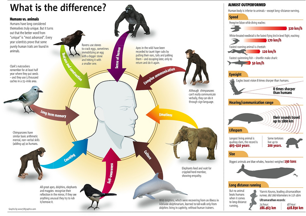 Humans vs Animals Infographic