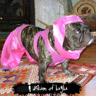 I Dream of Layla Frenchie Costume