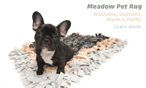 Learn Meadow Pet Rug with Frenchie from Wildebeest