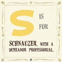 s is for schnauzer bill robinson