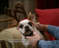 stella modern family christmas2