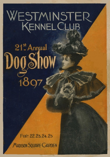 Westminster Dog Show 1897 French Bulldog