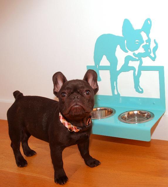 French Bulldog Hanging Feeder