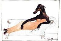 steadman-dogs8